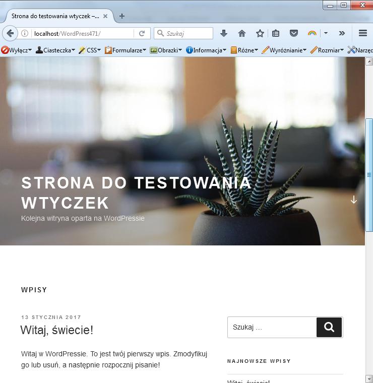 przykładowa strona wordpress
